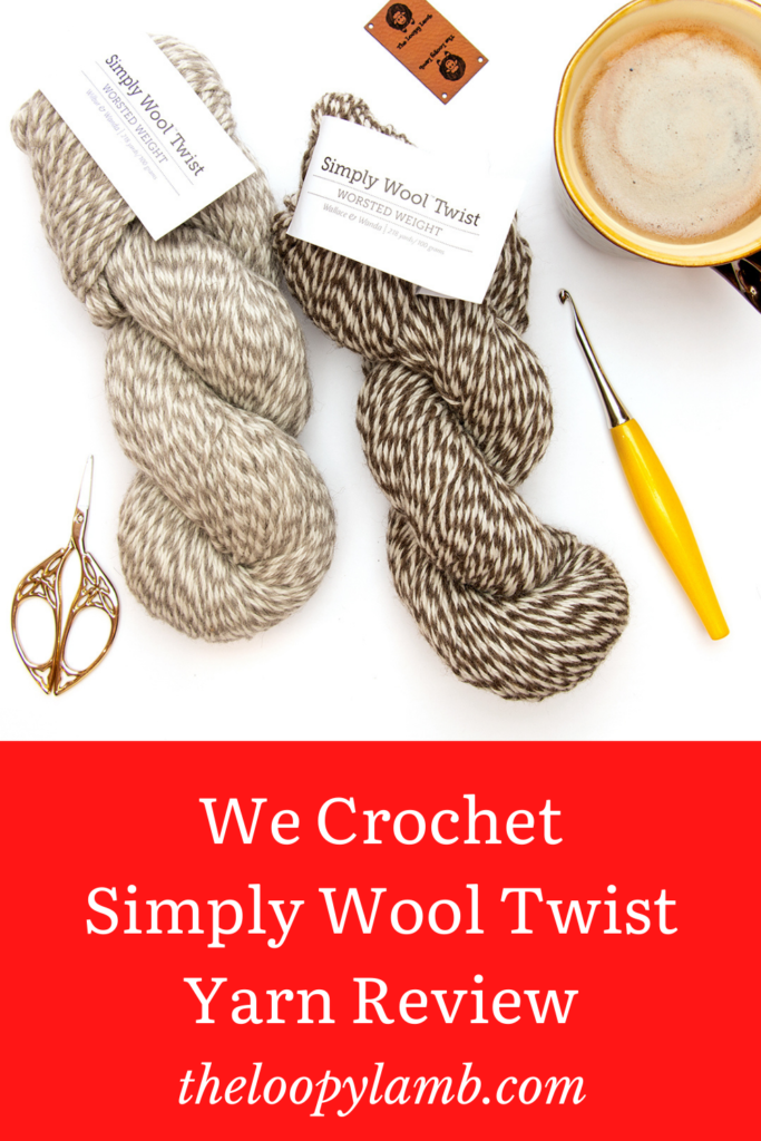 Two hanks of Simply Wool Worsted Twist in a flay lay with crochet accessories