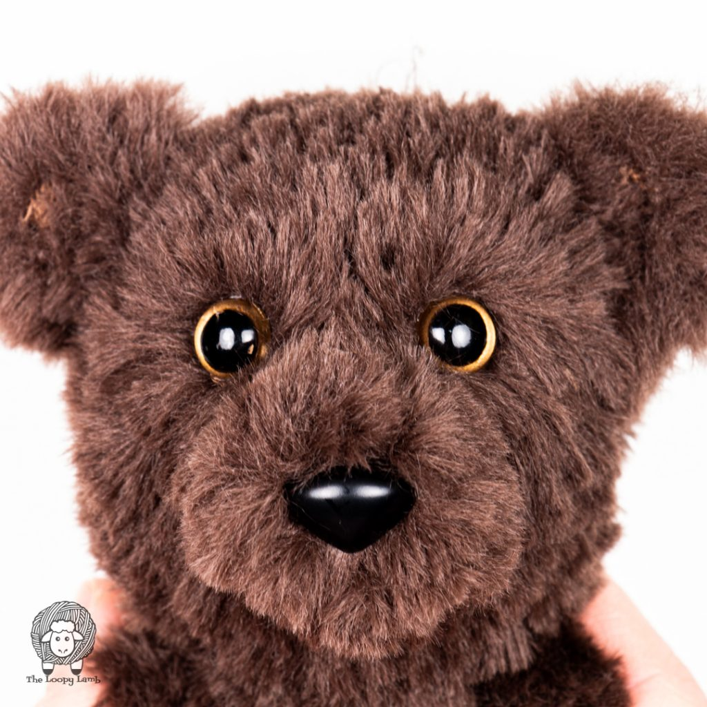 close up image of the furry teddy bear face