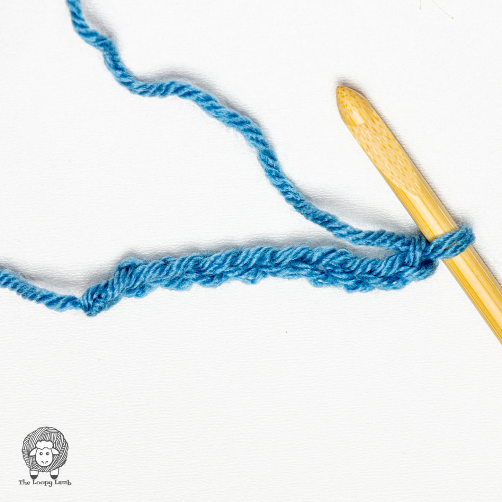 Crochet chain with a tunisian crochet hook in it