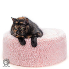 Pawsitively Cozy Crochet Cat Bed Pattern