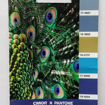 Peacock Blue Pantone Numbers